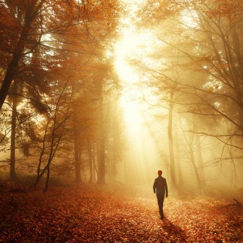 Série espiritismo – Estudo 3