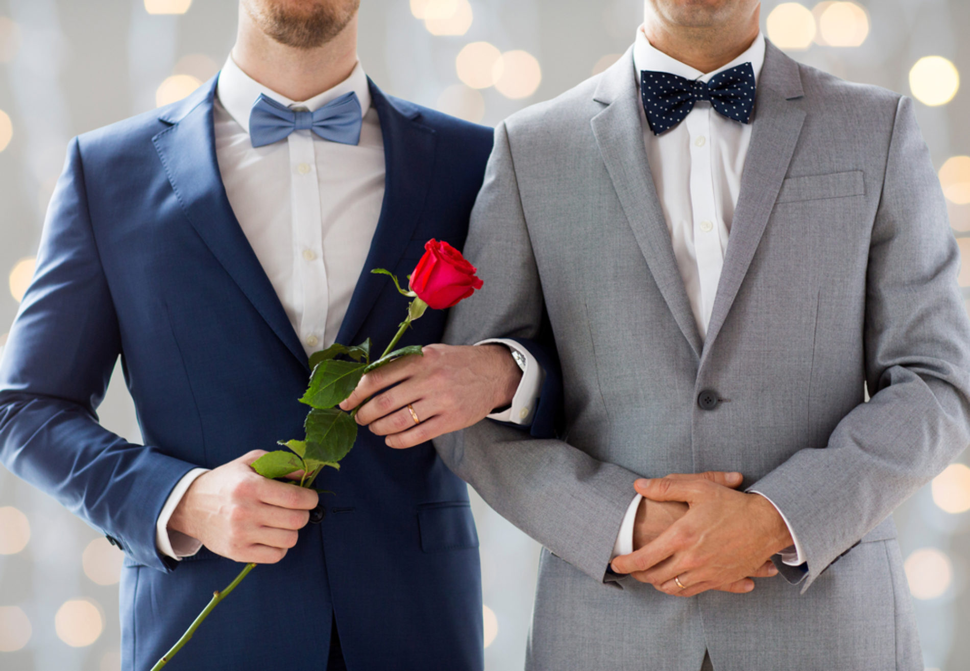 A Homossexualidade à luz da Bíblia e da Ciência